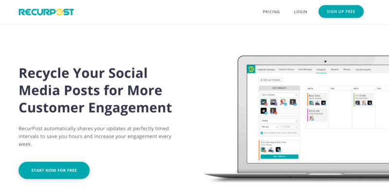 rp social media management tool